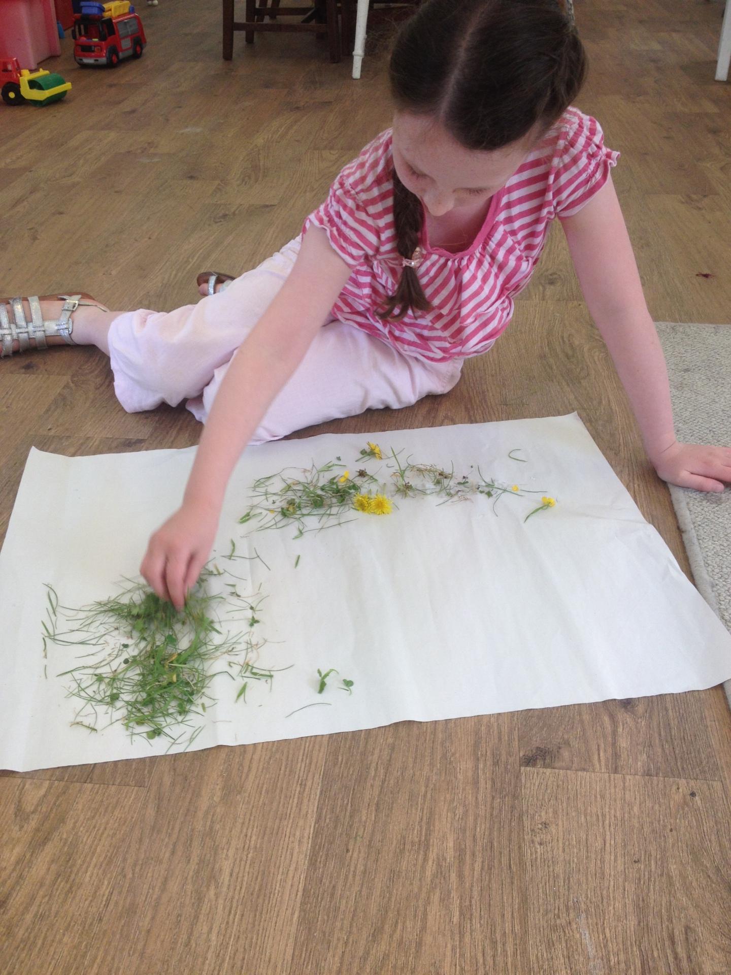 Making Garden Pictures