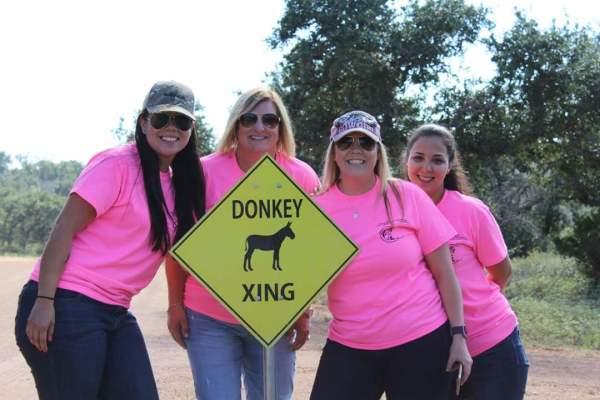 Wine Tours, Burnet Texas