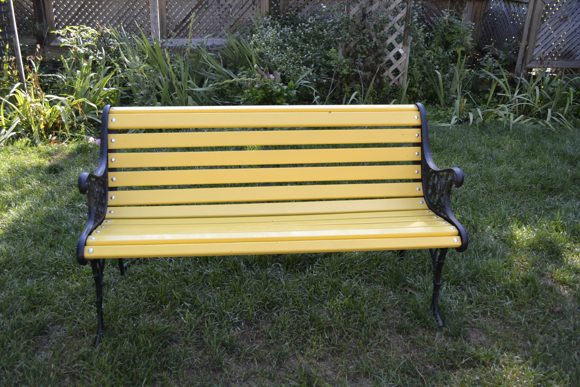 Yellow Park Bench