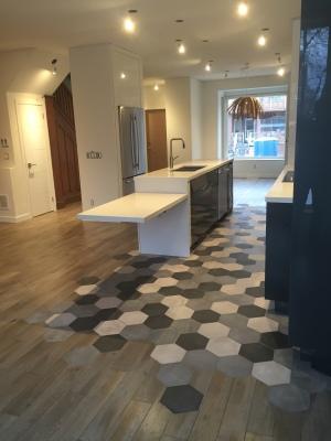 St Clair & Bathurst - Modern Contemporary Home Addition/Reno