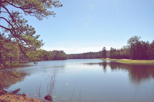 Notasulga Town Lake