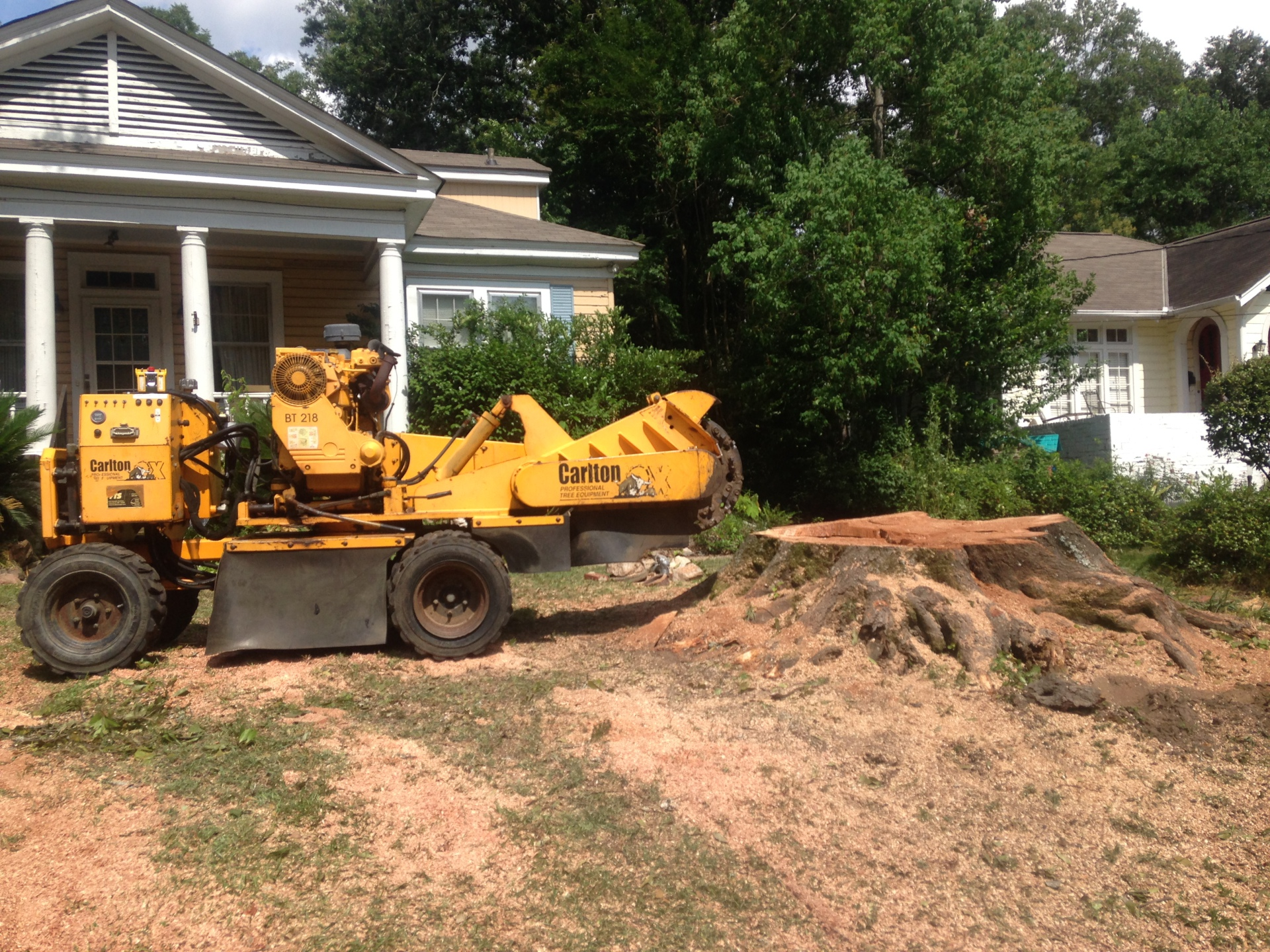 Grinding a Big Stump in Prattville
