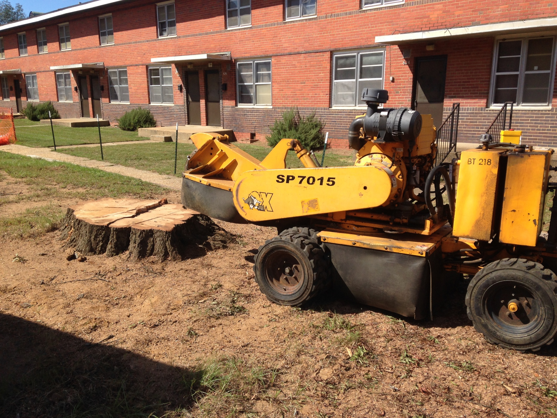 Grinding a Stump in Prattville