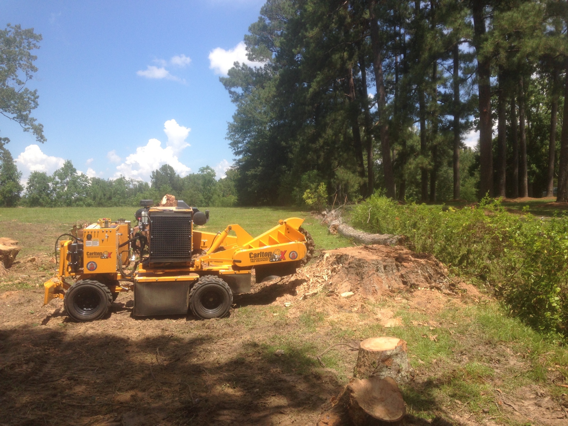 Prattville Stump Removal