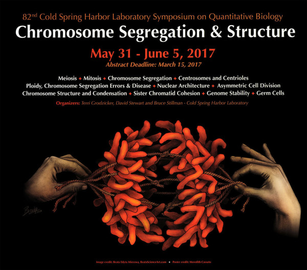 CSHL Symposium on Chromosome Segregation & Structure