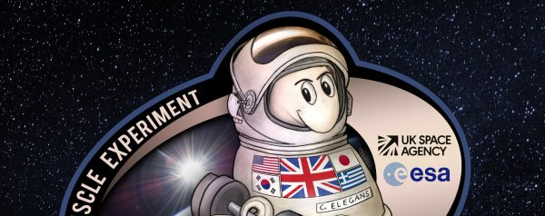 Mission Patch for Worms in Space