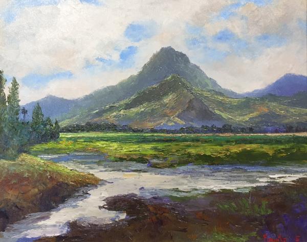 Kawainui Marsh Kailua Ed Furuike