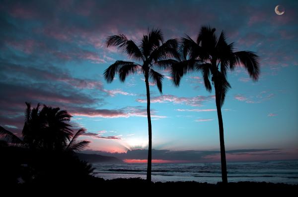Haleiwa Sunset Claro Cabading