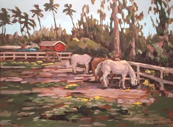 Waialua Polo Horses Mark Howard SOLD