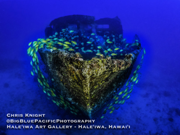 FV Friendship Wreck Fish Heart Chris Knight