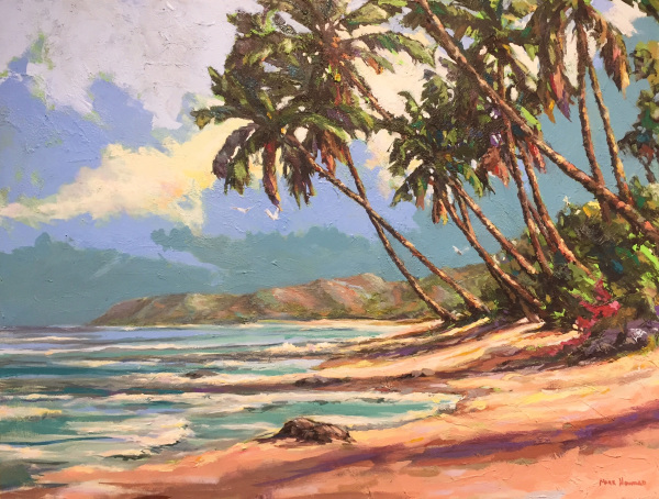 Hawaiian Awakening Mark Howard