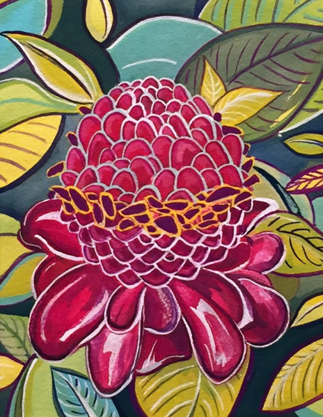 Torch Ginger Miriam Zora Engel