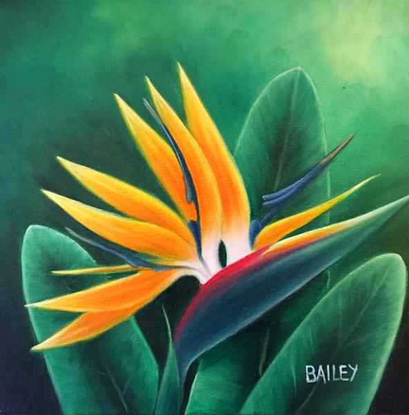 Bird of Paradise Bailey Leung