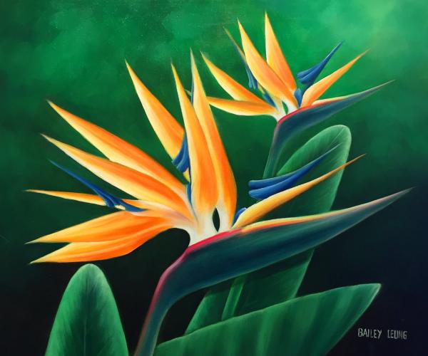 Birds of Paradise Bailey Leung