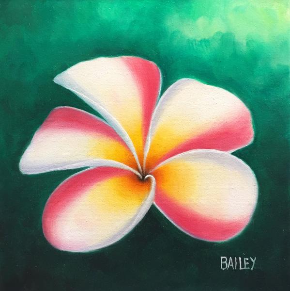 Pink Plumeria Bailey Leung