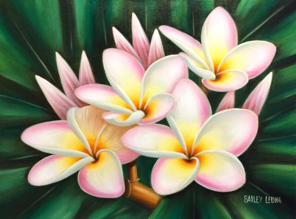 Plumerias Bailey Leung