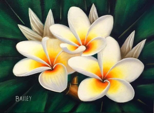 White Plumerias Bailey Leung SOLD