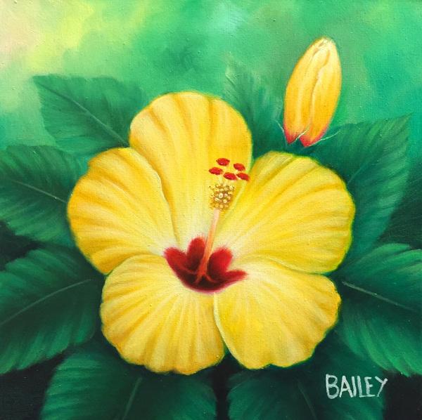 Yellow Hibiscus Bailey Leung
