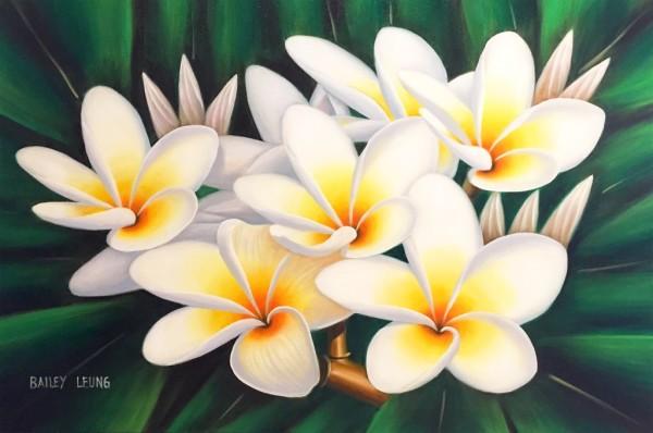 White Plumerias Bailey Leung