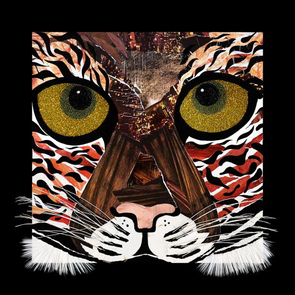 Teagan the Tiger Cassy White