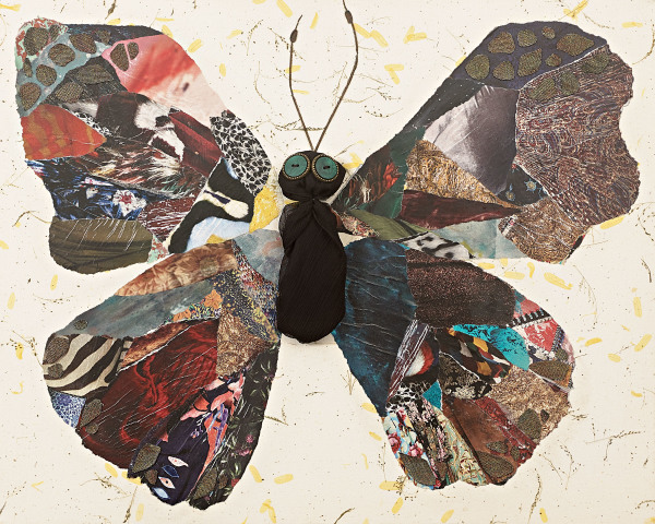 The Butterfly Effect Cassy White