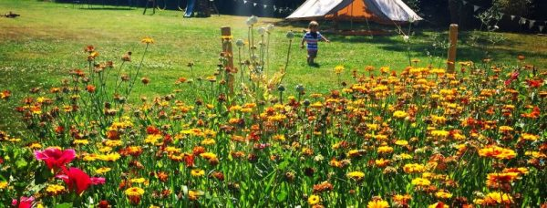 8 SIMPLE CAMPING ACTIVITIES FOR CHILDREN