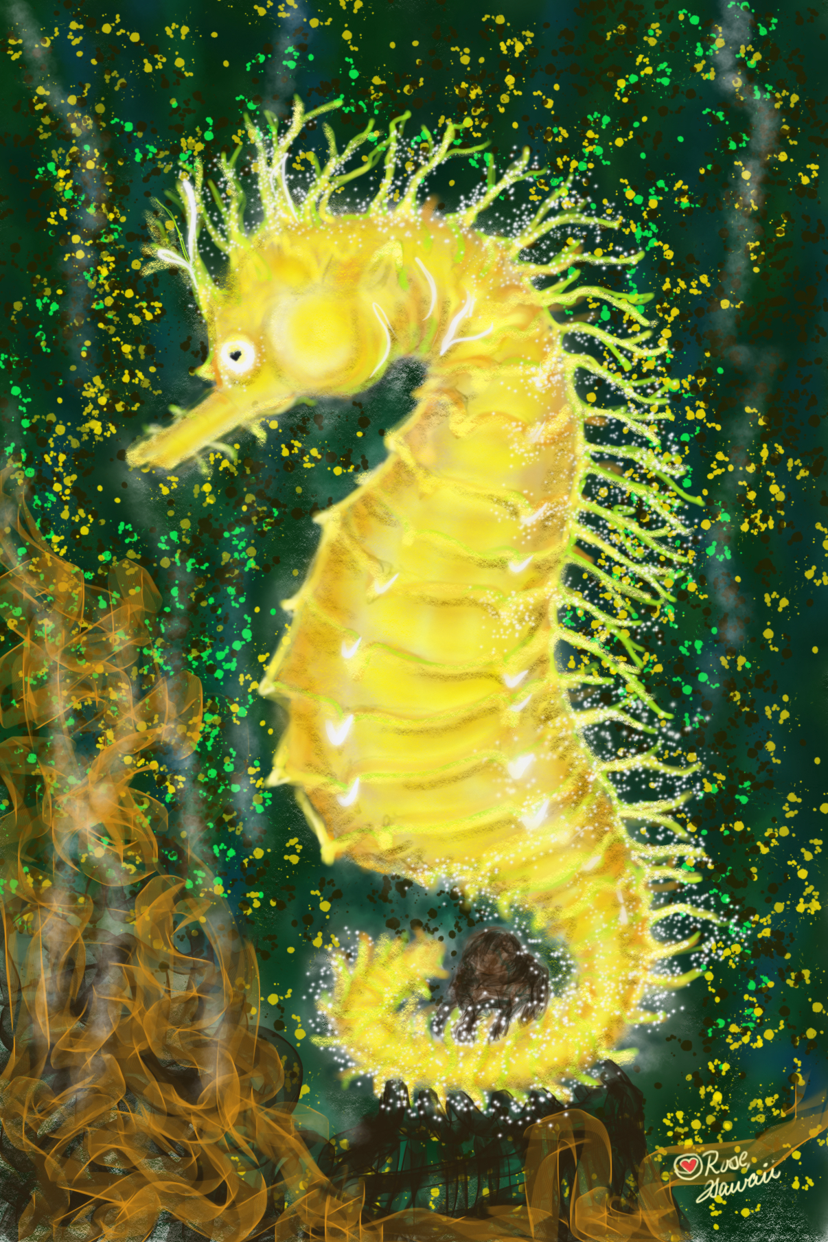 Hawaiian Sea Horse A