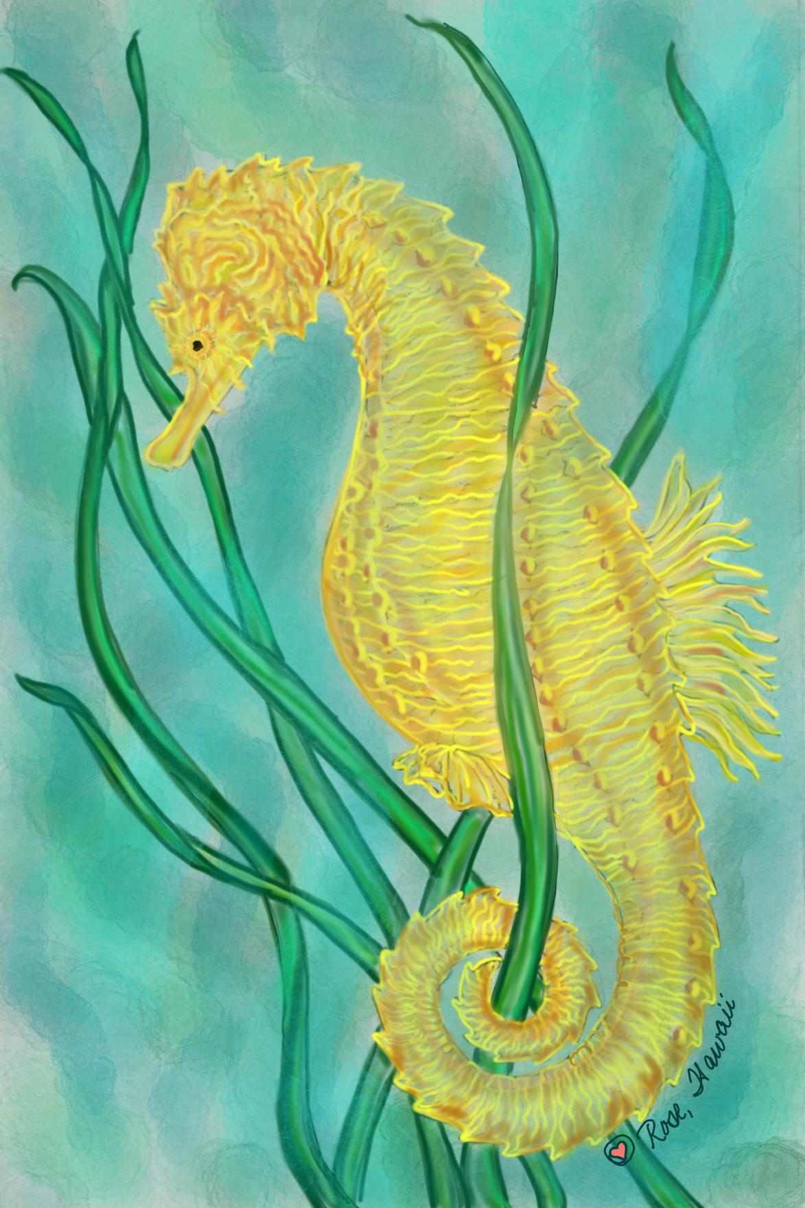 Hawaiian Seahorse B