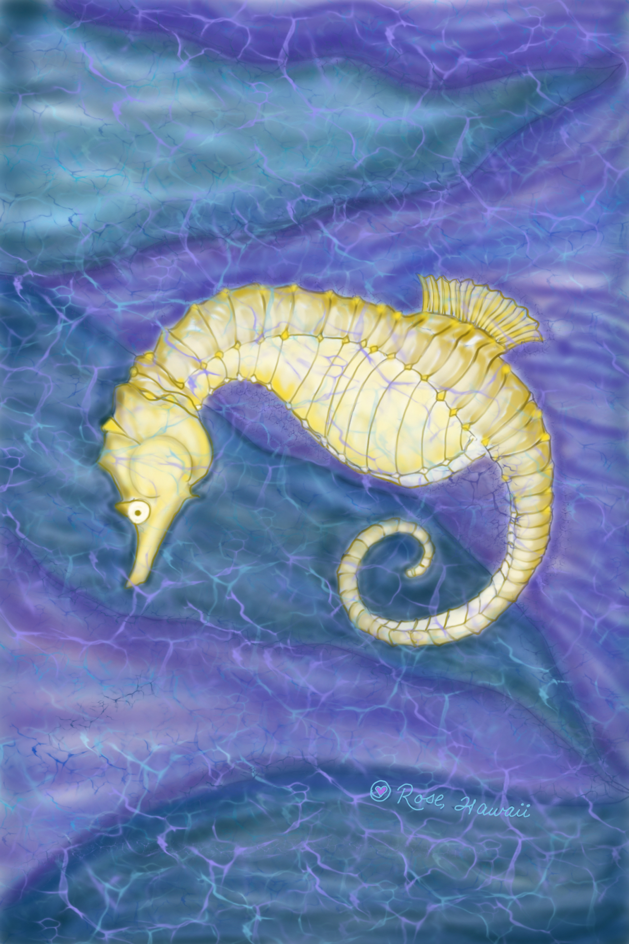 Hawaiian Seahorse D