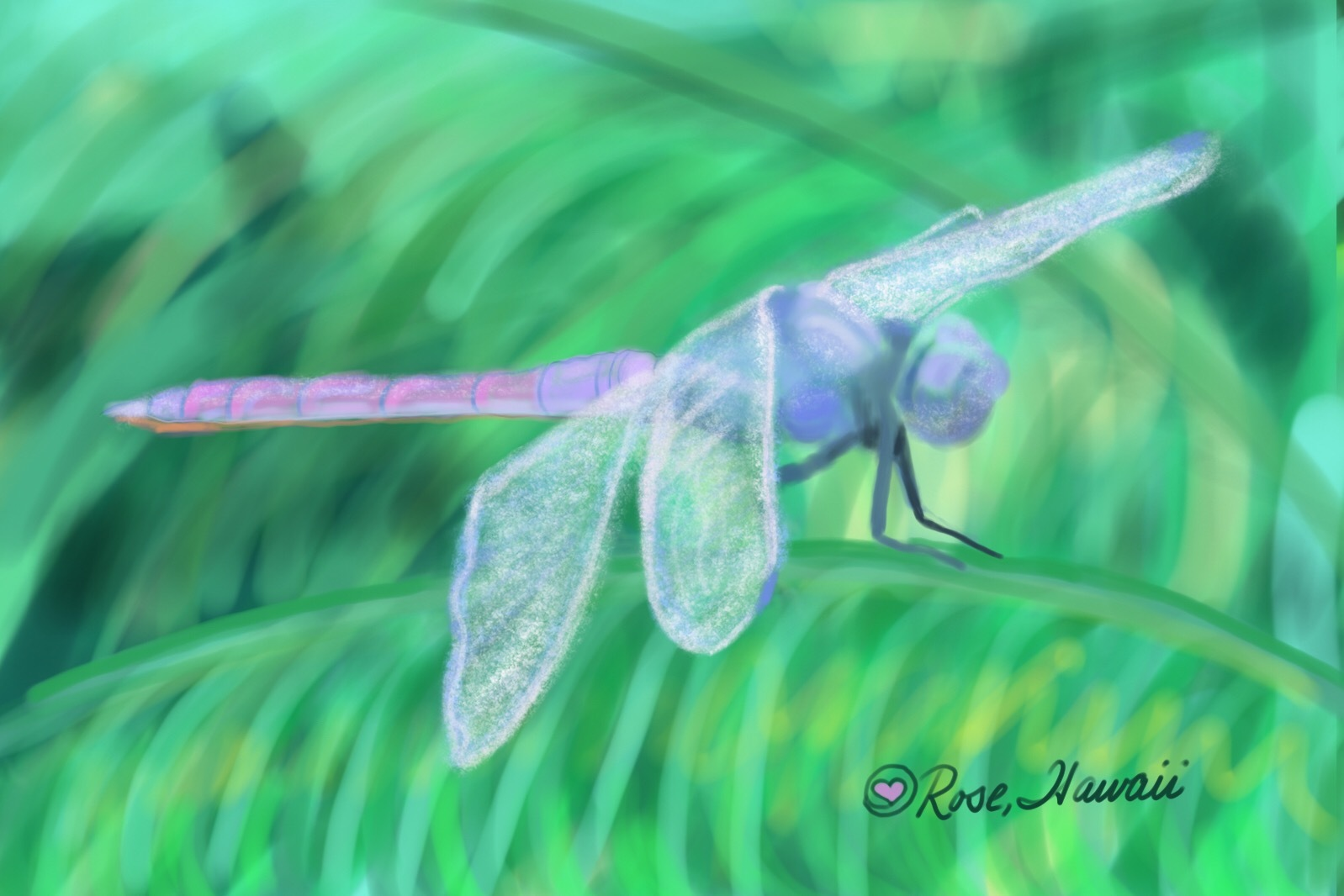 Purple Hawaiian Dragonfly