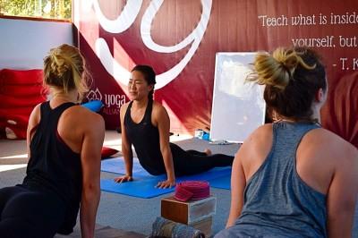 100Hr Vinyasa Yoga TTC