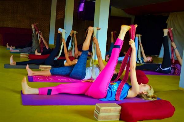 Yoga Therapy Teacher Training India