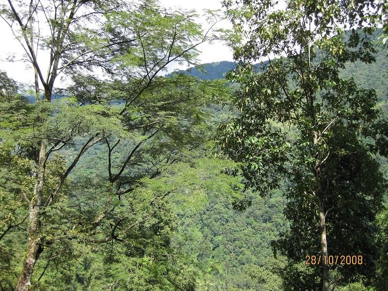 2008: The countryside at Mayel Lyang Academy