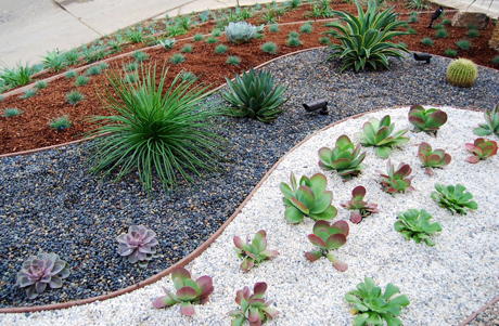 Affordable and inexpensive landscaping design example