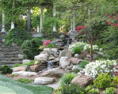 Popular Trends in Landscape Design