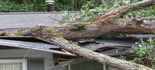 Lightning Damage Restoration Indianapolis