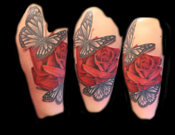 butterflies and rose