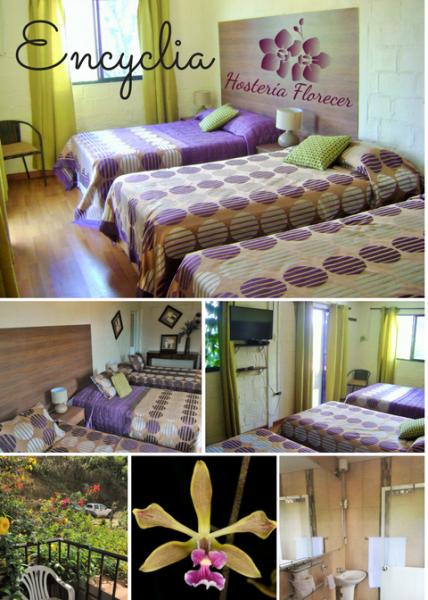 Room # 1 ENCYCLIA: Habitación triple con balcón y baño privado.
