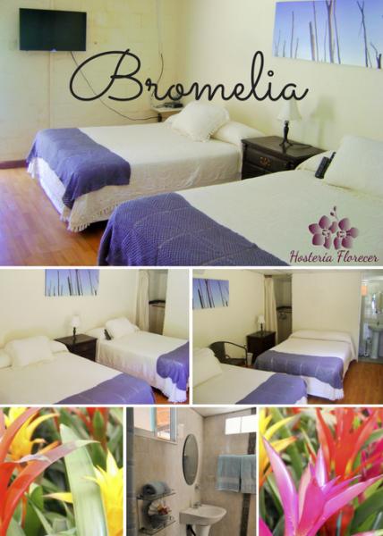 Room # 2 BROMELIA: Habitación doble con dos camas matrimoniales y baño privado.