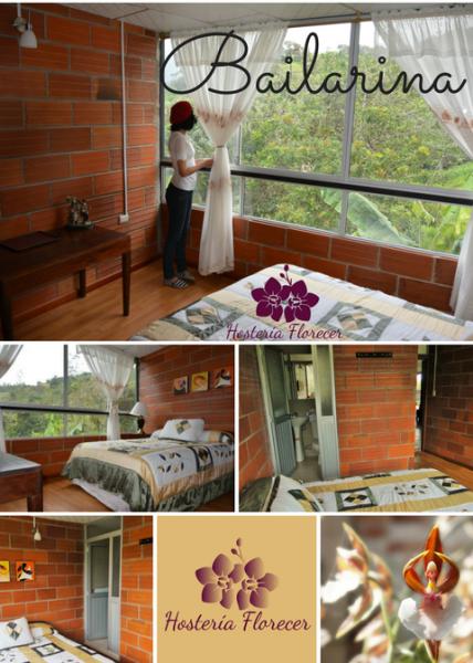 Room # 5 BAILARINA: Habitación matrimonial con vista a la montaña y baño privado.