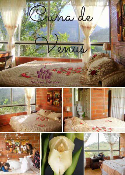 Room # 7 CUNA DE VENUS: Habitación V.I.P. matrimonial con vista a la montaña y baño privado.