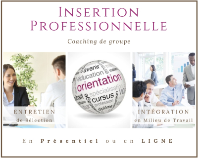 "Programme ""Insertion Professionnelle"""