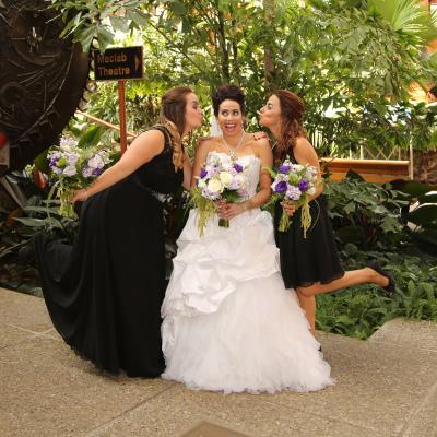 Wedding Photos at Citadel Theatre