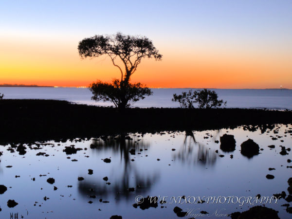 sunset, mangrove, reflections, landscape, photography, sky