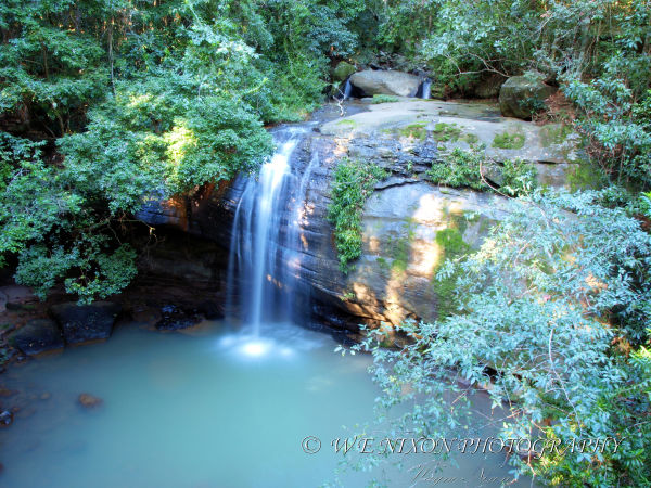 waterfall, creek, rainforest, landscape, photography