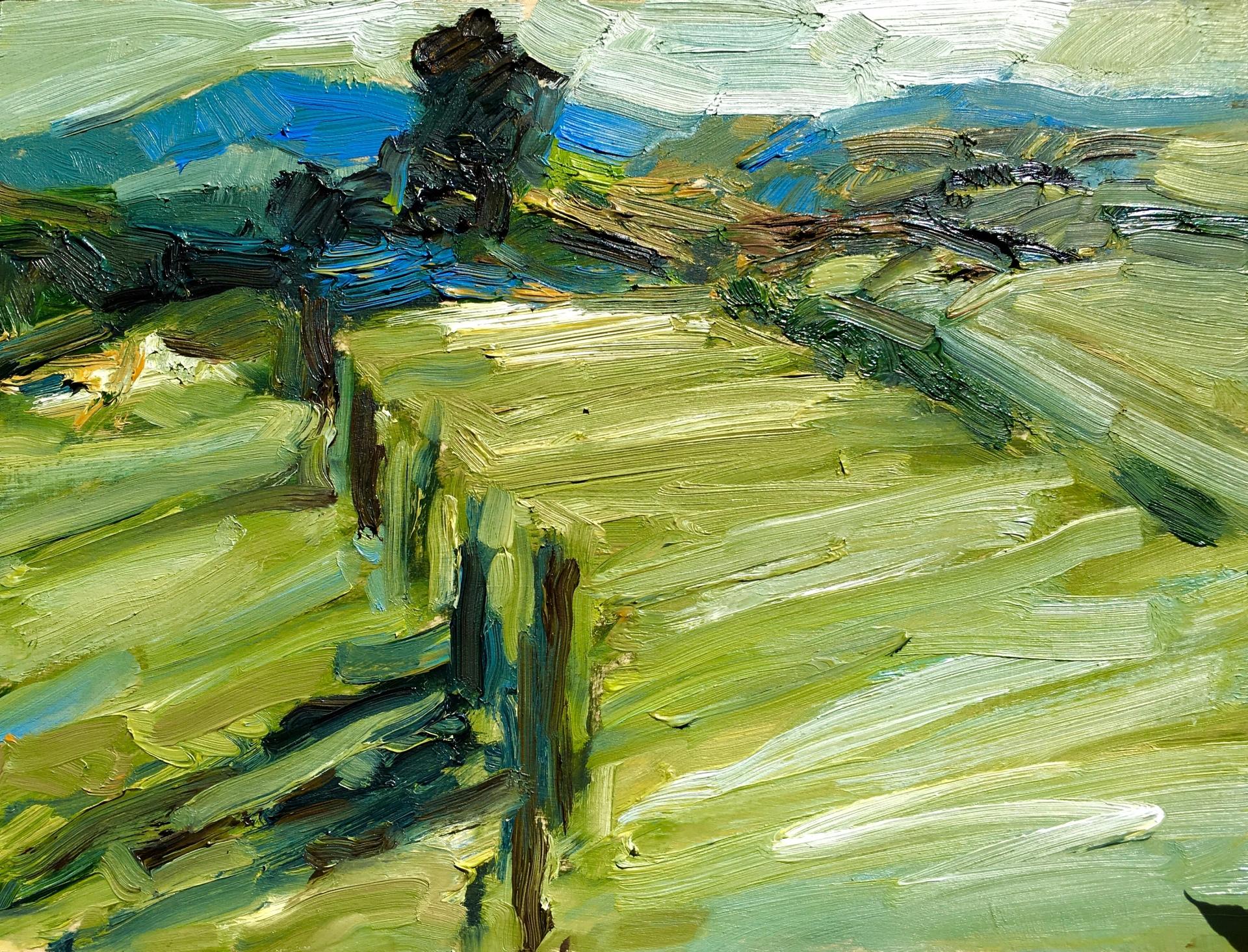 Weddin Mountains