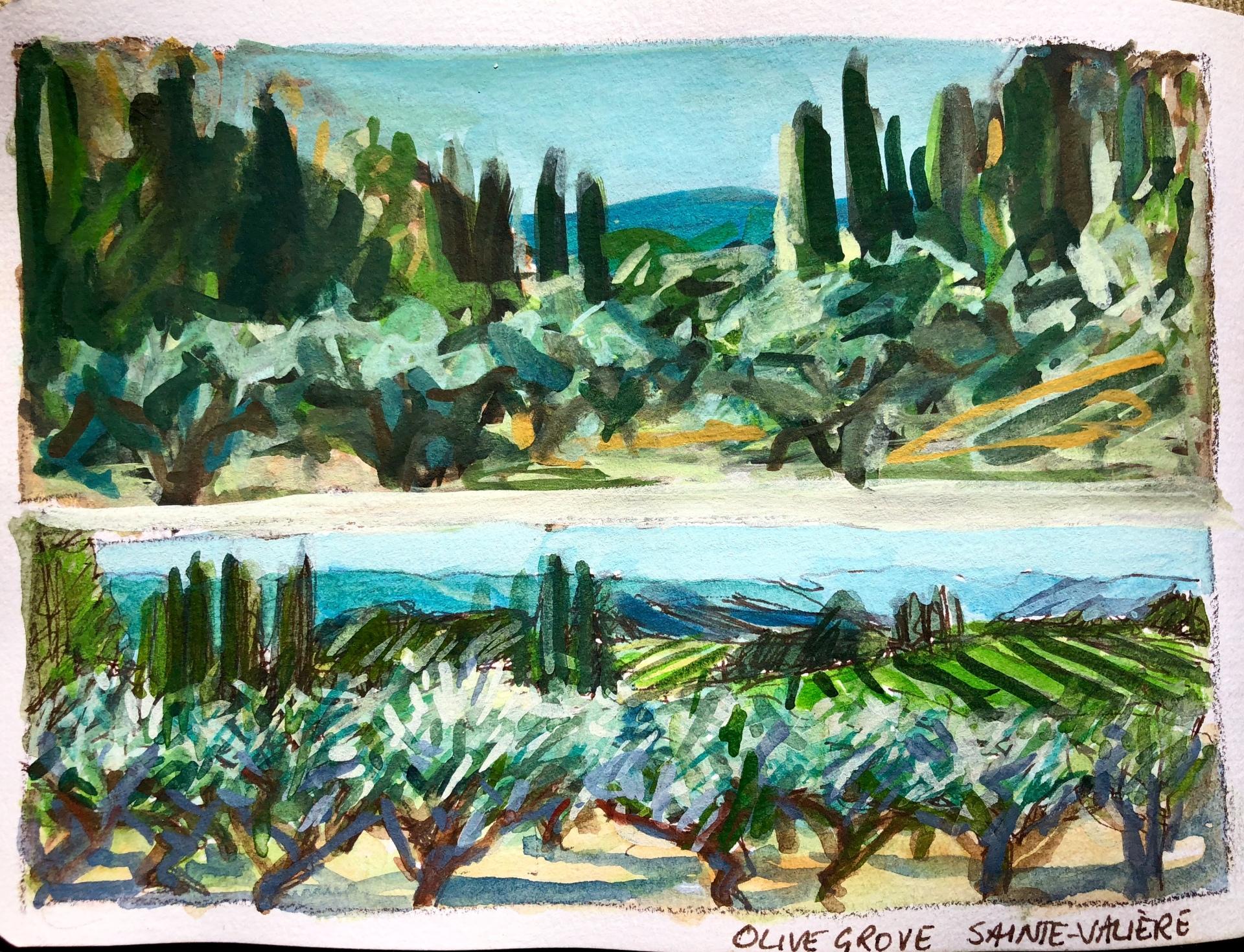 Olive Grove Sainte-Valière