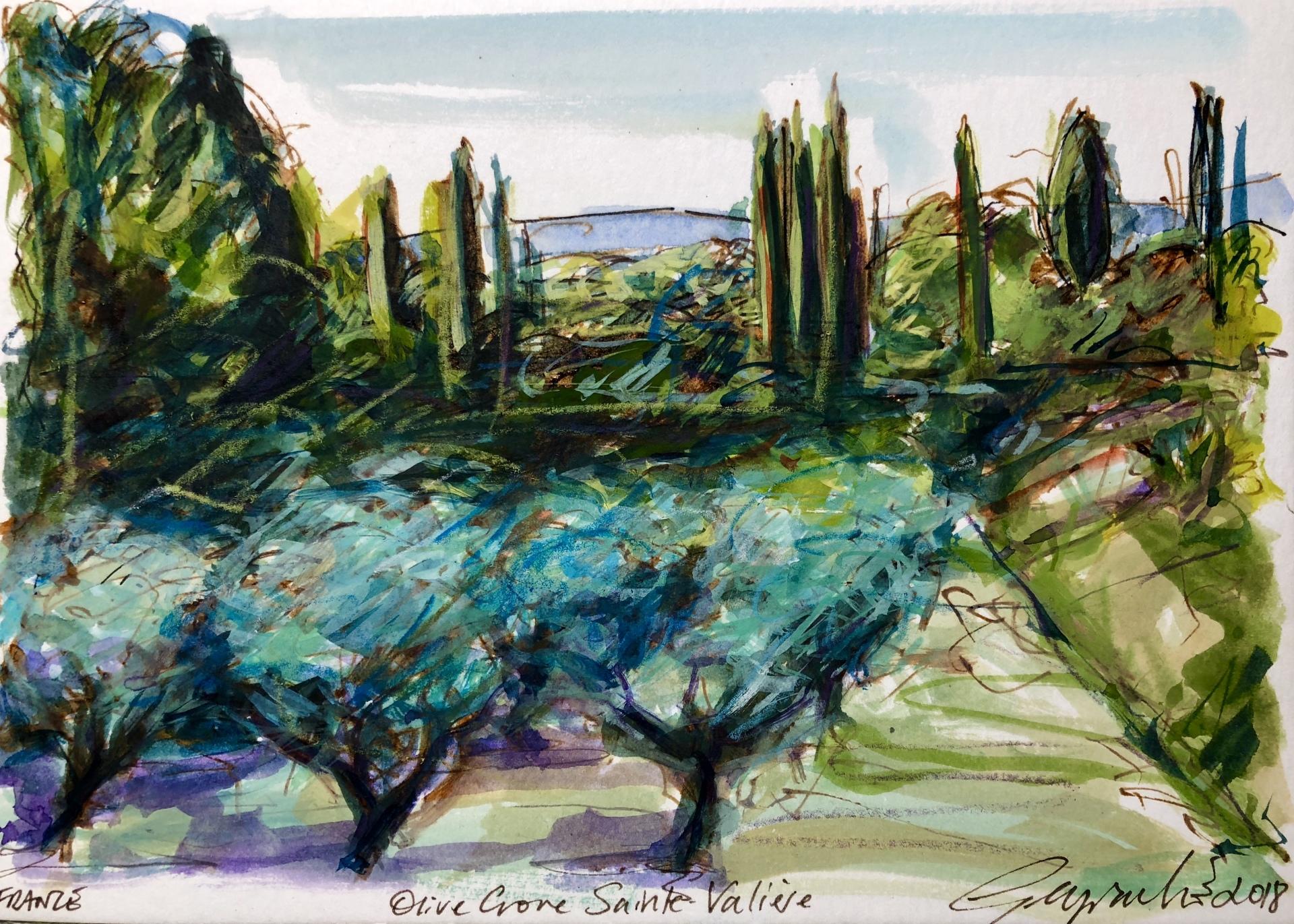 Olive Grove Sainte Valiére