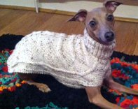 Featured Advertisment - Lynn's Bespoke Dog Coats - Proceeds to dog charities