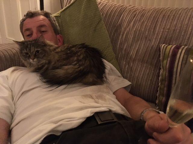 Mali - first cat boarder